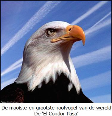 El Condor Pasa