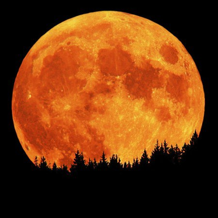 Red Moon Rapture4