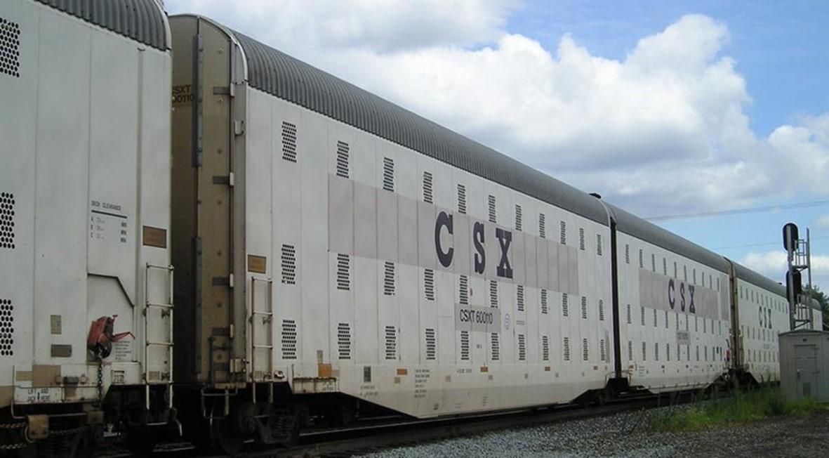 FEMA trenes de la muerte – De Zonen Gods